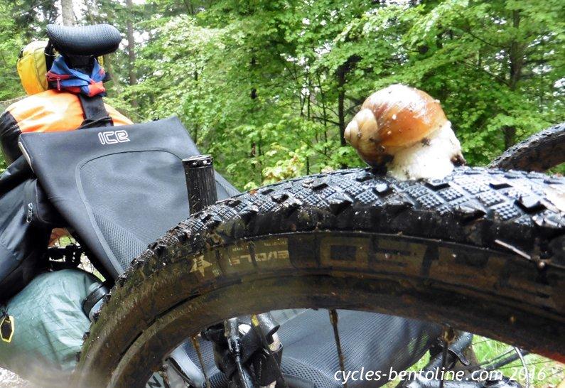 L'Escargot des cimes rencontre un de ses congénères!